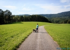 2014-08-29-Forrest-Walk_14