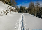 2015-01-06_Schneeschuhwandern_Guter_Hirte_21