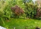 unser Garten ist am blühen