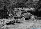 Alter LKW für Forstarbeiten