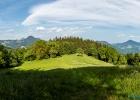 Panorama aus dem Wald auf die Wiese