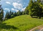 herrlich grüne Wiese mit blauem Himmel
