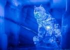 Eisbär ;)