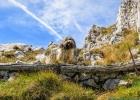 Clarence bei einem Aussichtspunkt unter dem Gipfel (hier war ich auf Cachesuche)
