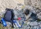 """Clarence an den Rucksack """"gekettet"""" während wir auf den Gipfel stiegen"""