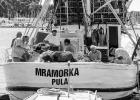 Fischer beim Tratsch im Hafen