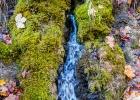 kleiner Moos bewachsender Wasserfall