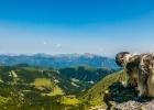 Clarence blickt ins Tal - Wanderung auf den Seckauer Zinken