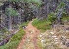 Märchenhafter Wanderweg