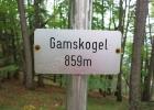 2016-10-02_Gamskogel_5