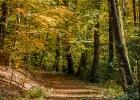 der Herbst, einfach wunderschön