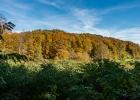 dem Waldrand sind wir zuvor entlang spaziert