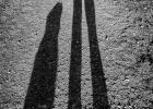 unsere Schatten eilen voraus