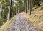 steil hinauf zum Patscha Gipfel