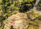 durch den Wald hinunter auf den Wanderweg