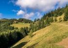 ein Traumtag in der herrlich grünen Natur