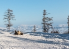 Yippie, endlich Schnee am Schöckl (Mitte Februar)