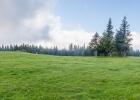 Panorama auf der Almwiese