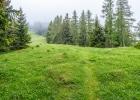 endlich auf der grünen Wiese unterhalb des Schöckl-Plateau