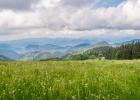 tolle Stimmung mit den Wolken und dem satten Grün