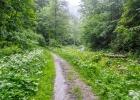 ruhig und gemütlich dem Rötschbach entlang