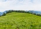 Panorama über die Almwiese