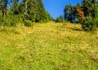 steil sinds die letzen Meter zum Haneggkogel