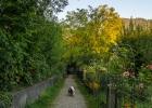 vorbei an Heimgärten Richtung Adriach
