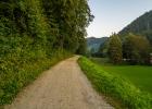 der Forststraße dem Mühlbach entlang