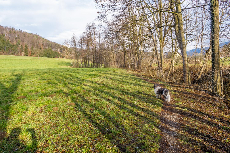 Rainbach im mhlkreis leute aus kennenlernen - Mdchen