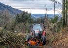 Forstarbeiter im steilen Gelände
