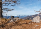 2020-02-15-Ranerwand-Runde_17