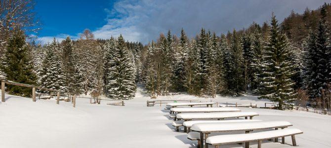 Schneeschuh-Wanderungen